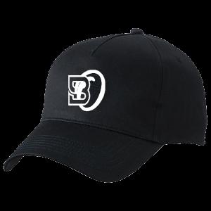 bo_logo_shapka